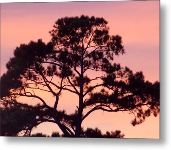 Southern Sundown Metal Print