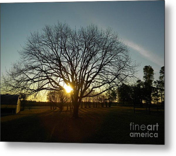 Southern Sunrise Special Metal Print