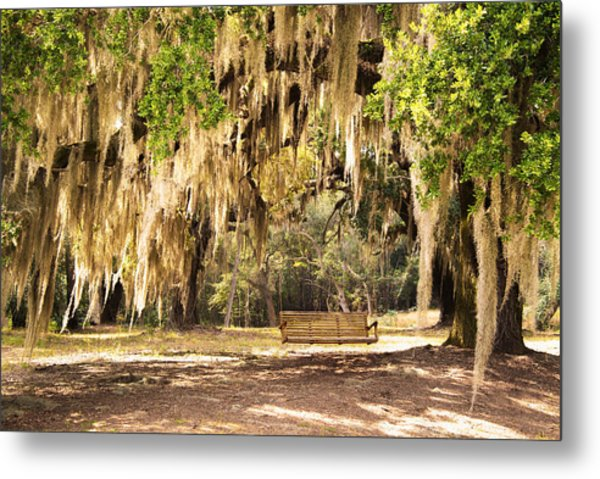 Southern Tree Metal Print