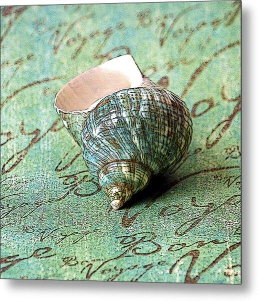 Souvenir Shell Metal Print