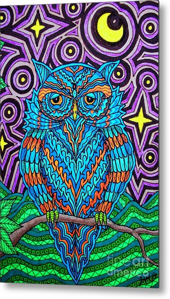 Mr. Owl  Metal Print