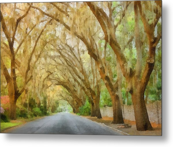 Spanish Moss - Symbol Of The South Metal Print