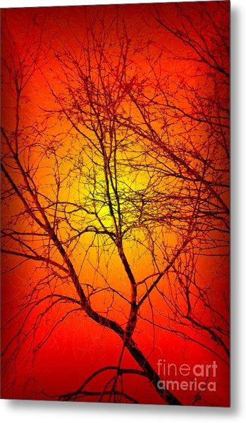 Spectral Sunrise Metal Print