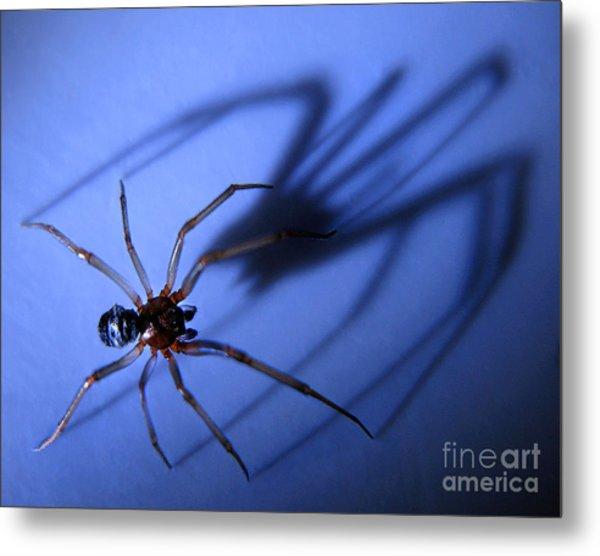 Spider Blue Metal Print