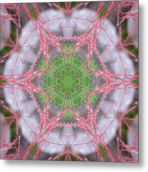 Spider Web On Smokebush Metal Print