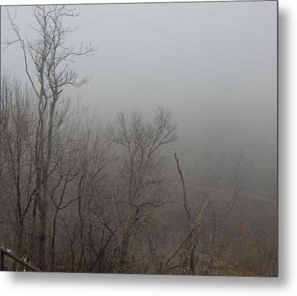 Spooky Scary Trees Metal Print