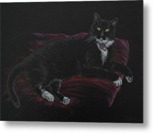 Spooky The Cat Metal Print