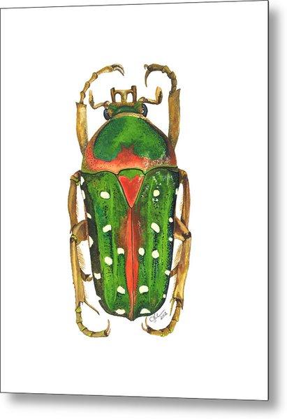 Spotted Flour Beetle Metal Print