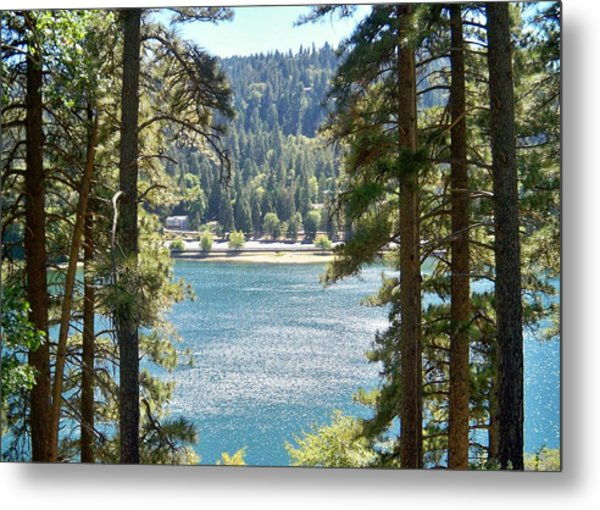 Forrest Mountain Trees Lake Scenic Photography Lake Gregory San Bernardino California - Ai P. Nilson Metal Print