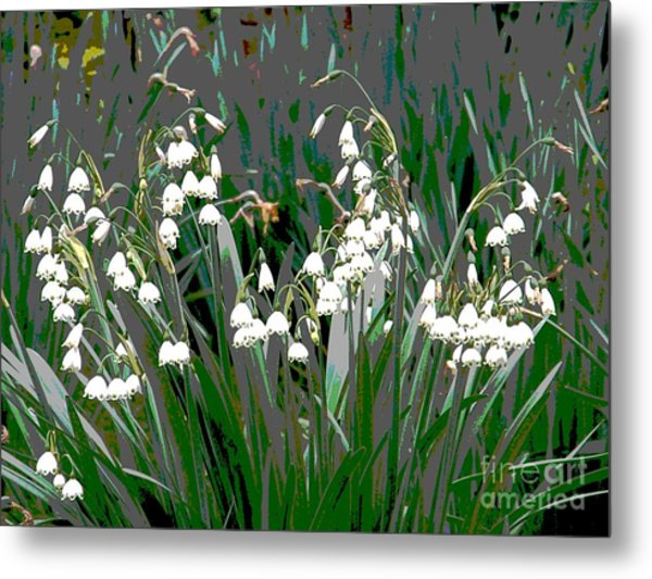 Spring 3 Metal Print by Shirley Sparks