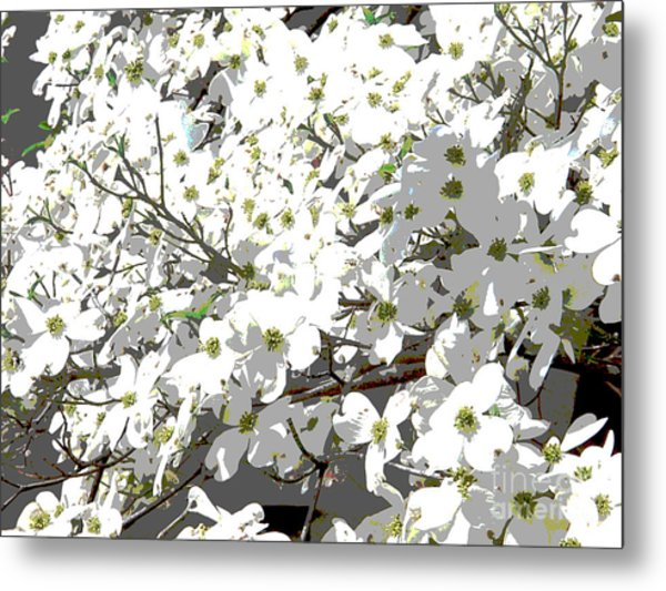 Spring 8 Metal Print by Shirley Sparks
