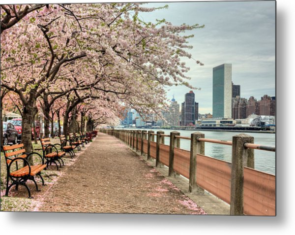 Spring Along The East River Metal Print
