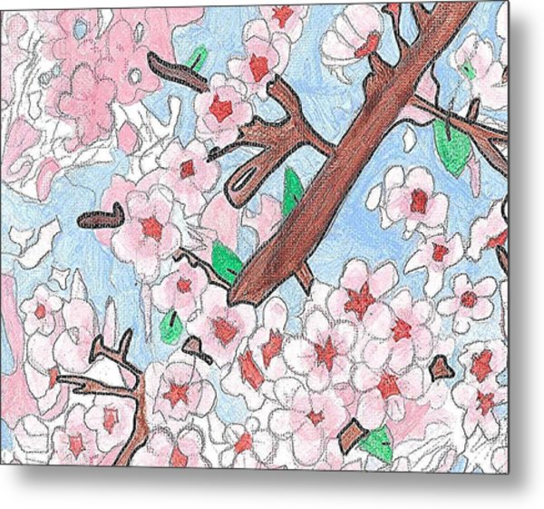 Spring Cherry Blossoms  Metal Print by Fred Hanna