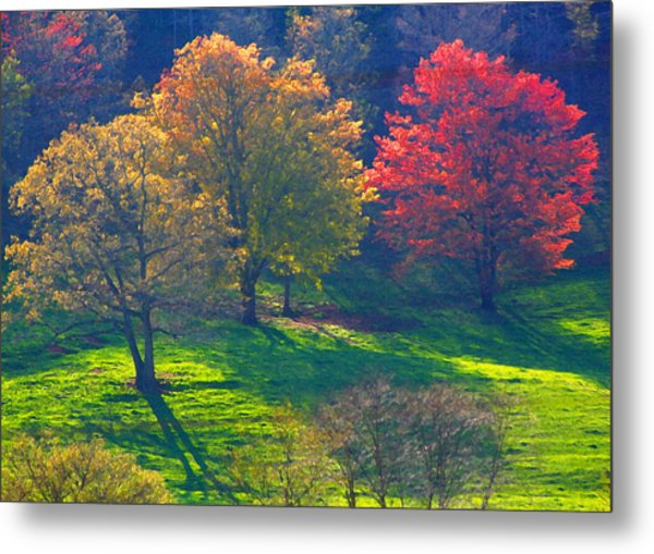 Spring Color Just Down The Road Metal Print by Alan Olansky