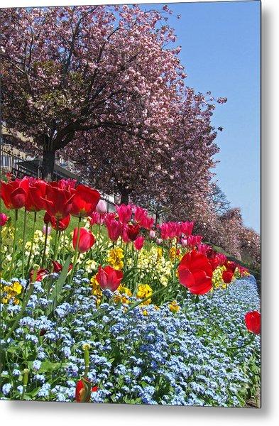 Spring Flowers - Edinburgh Metal Print