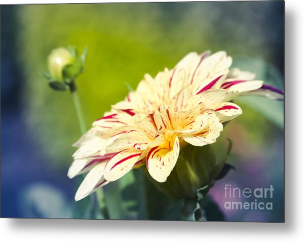 Spring Dream Jewel Tones Metal Print