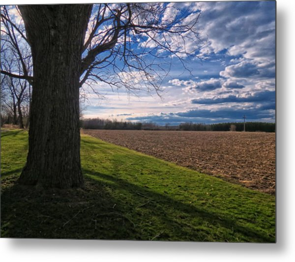 Spring Fields Metal Print by Susan Desmore