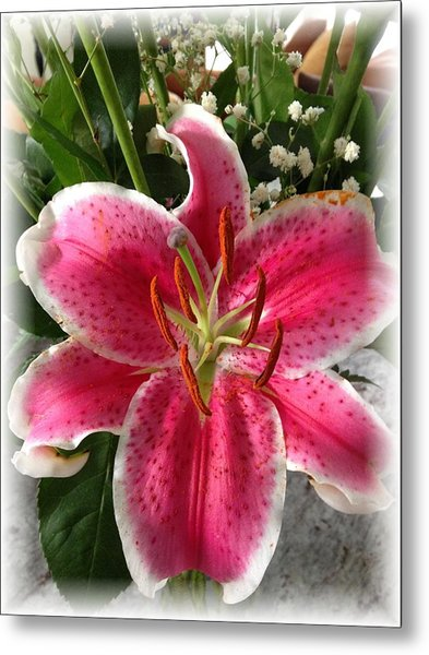 Spring Flower Collection 3 Metal Print