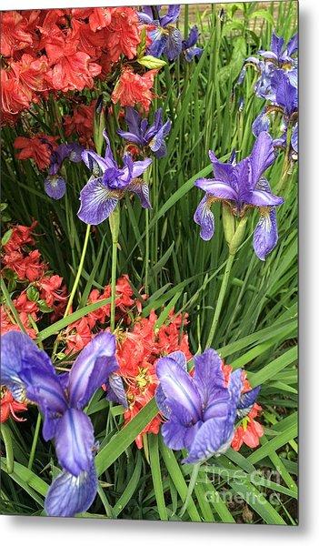 Spring Flowers 1 Metal Print