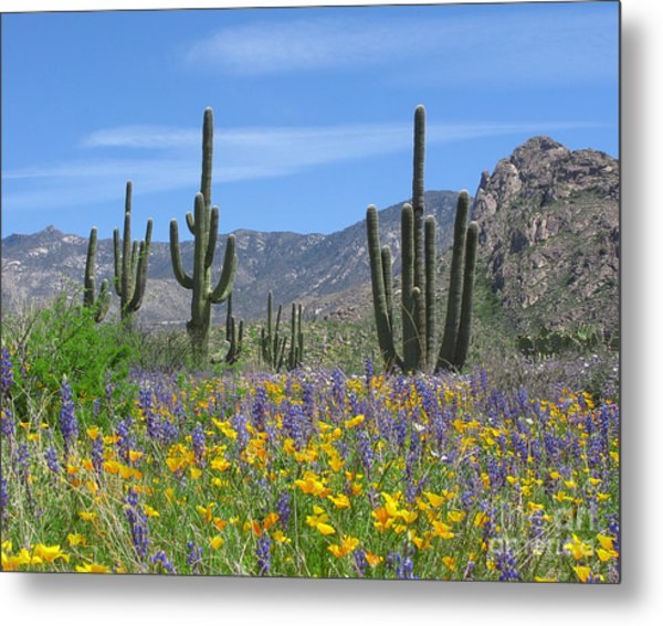 Spring Flowers In The Desert Metal Print by Elvira Butler