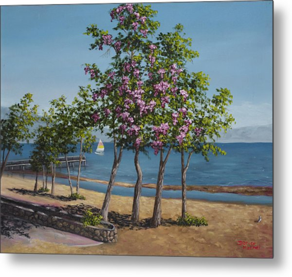 Spring In Kings Beach Lake Tahoe Metal Print