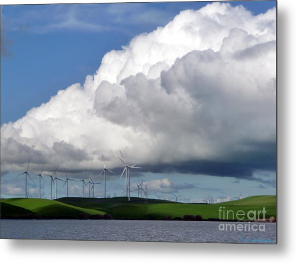 Spring In The Delta Metal Print