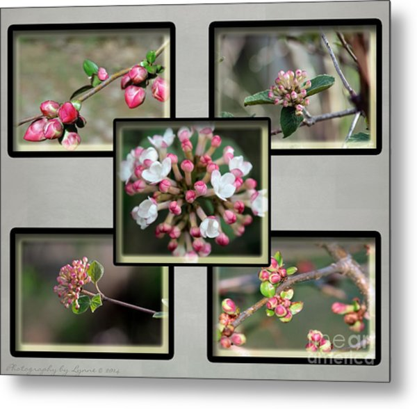 Spring Is Here - Gray Metal Print