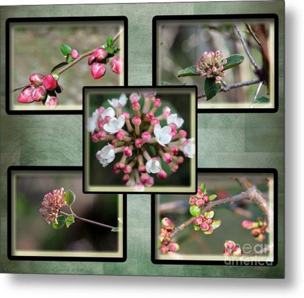 Spring Is Here - Green Metal Print