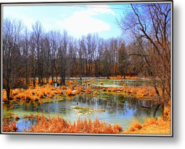 Spring Is In The Air Metal Print by Sheila Werth