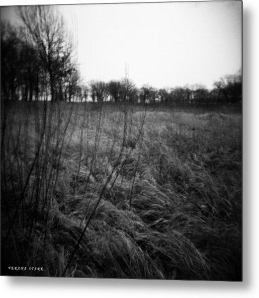 Spring Is Near Holga Photography Metal Print