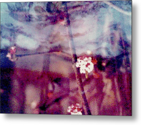 Spring-mirror Metal Print by Dorothy Rafferty