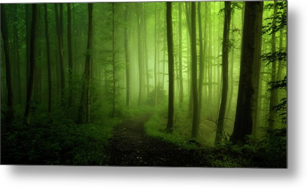 Spring Promise Metal Print by Norbert Maier