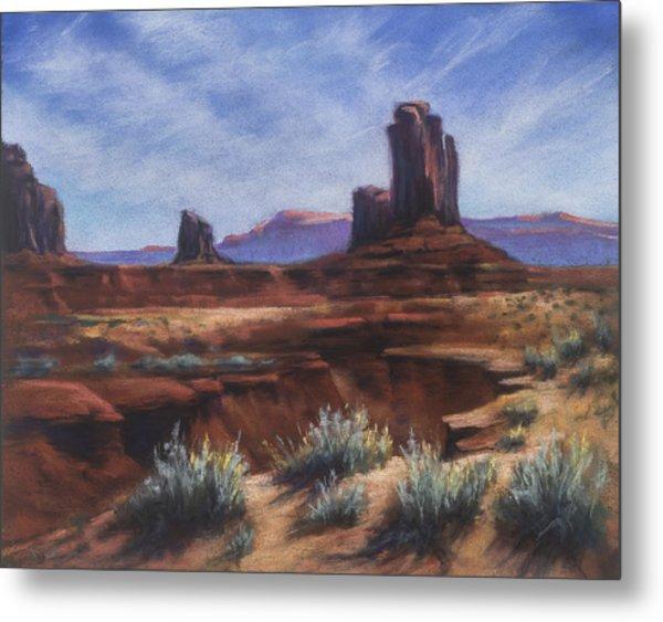 Spring Sage Monument Valley Az Metal Print