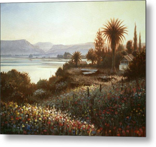 Spring Sunset  Northern Galilee Metal Print