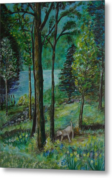 Spring Woodland With Dog - Painting Metal Print