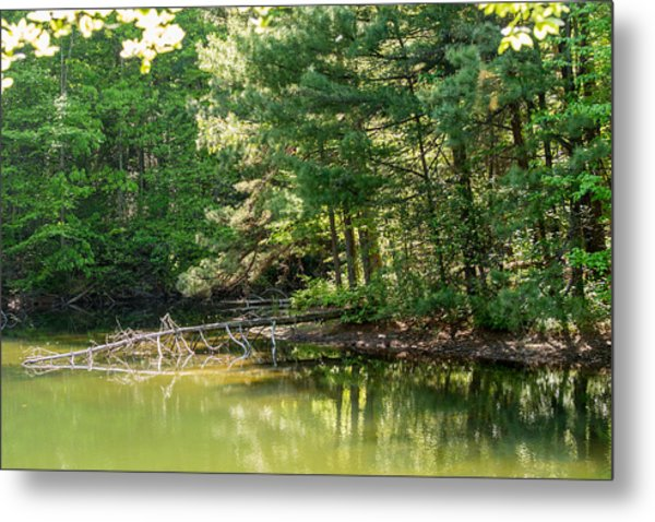 Springtime At Crystal Lake Metal Print by John Carroll