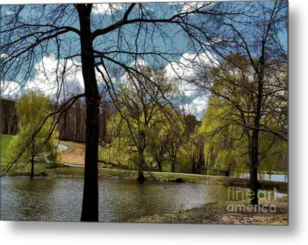 Springtime In The Country Metal Print by Gemblue Photography