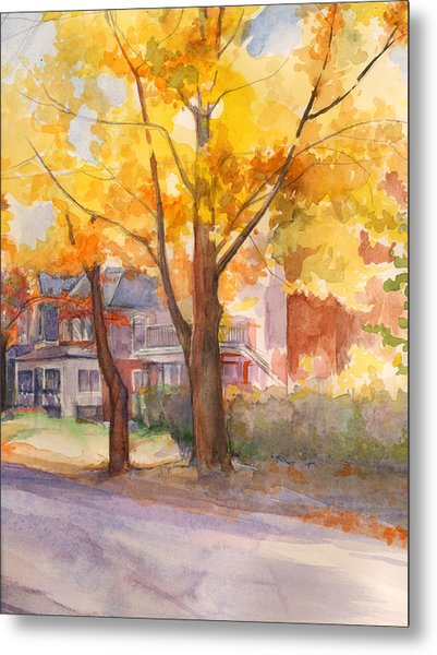 Spruce Street Maples Metal Print