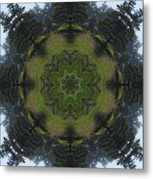 Spruce Tree Twins Metal Print