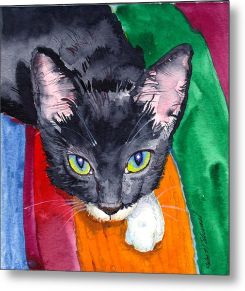 Squeak The Wonder Cat Metal Print