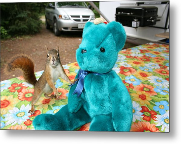 Squirrel And Bear Metal Print