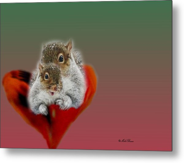 Squirrels Valentine Metal Print