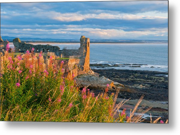 St Andrews Castle Metal Print by David Ross