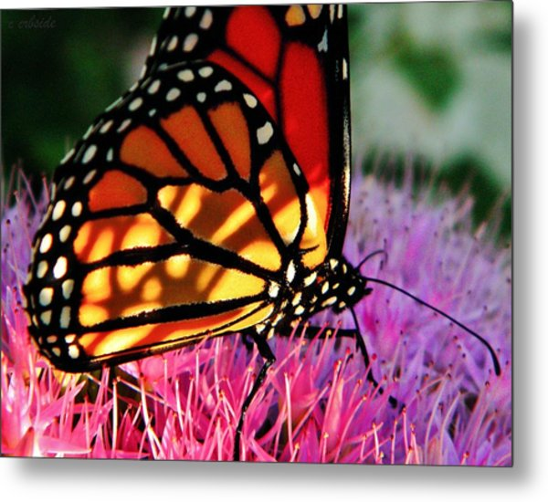 Stained Glass Monarch  Metal Print