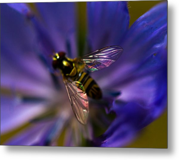 Stained Glass Wings Metal Print