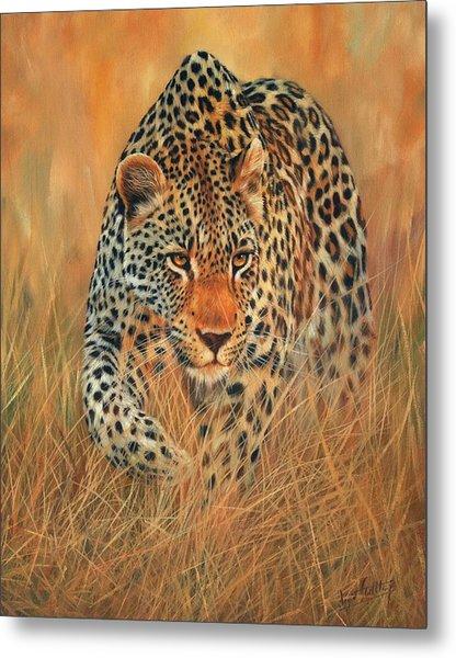 Stalking Leopard Metal Print
