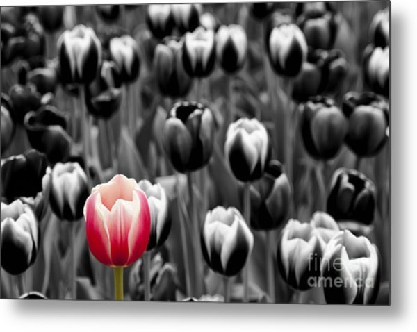 Stand Out From The Crowd... Metal Print