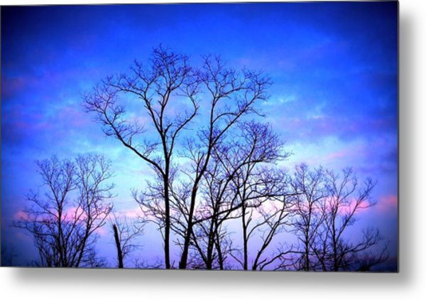 Standing Tall Metal Print by Jose Lopez