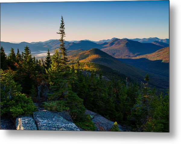 Metal Print featuring the photograph Standing Tall On Mt. Crawford by Jeff Sinon