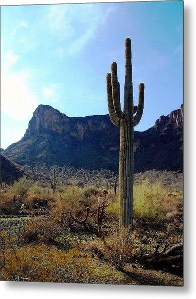 Standing Tall - Saguaro Metal Print